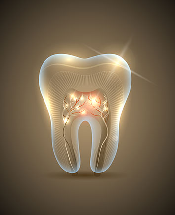 Root Canal Therapy | Paramount Dental | North Calgary | Family and General Dentist